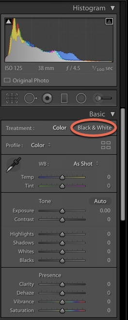 Develop Better Black and White Images in Lightroom-Darina Kopcok-DPS