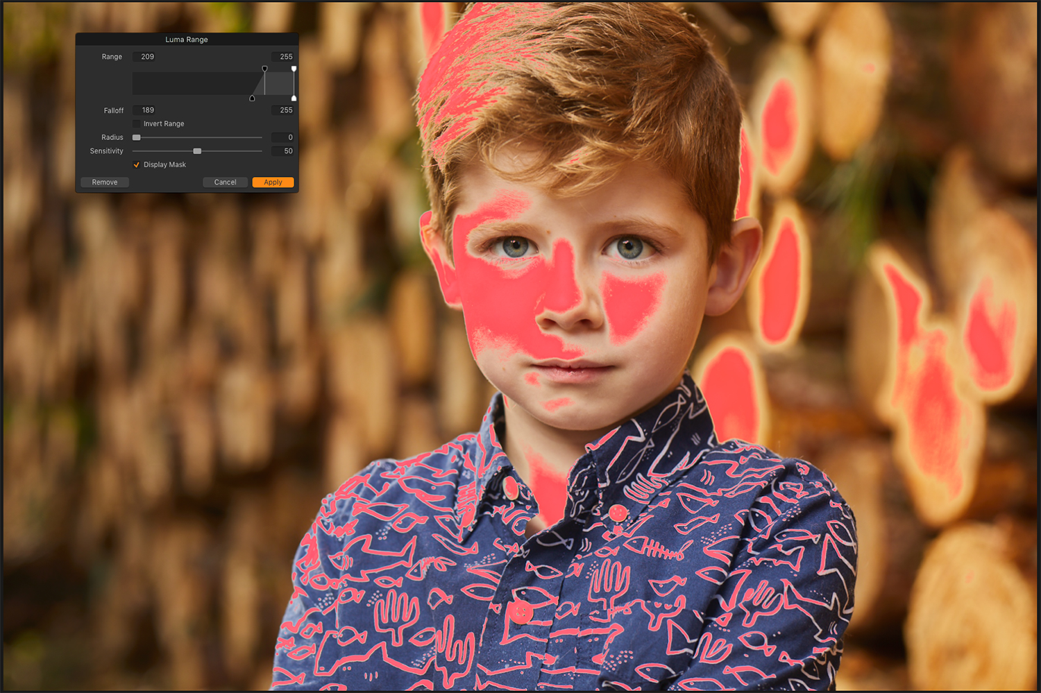 Screenshot of luminosity mask in Capture One