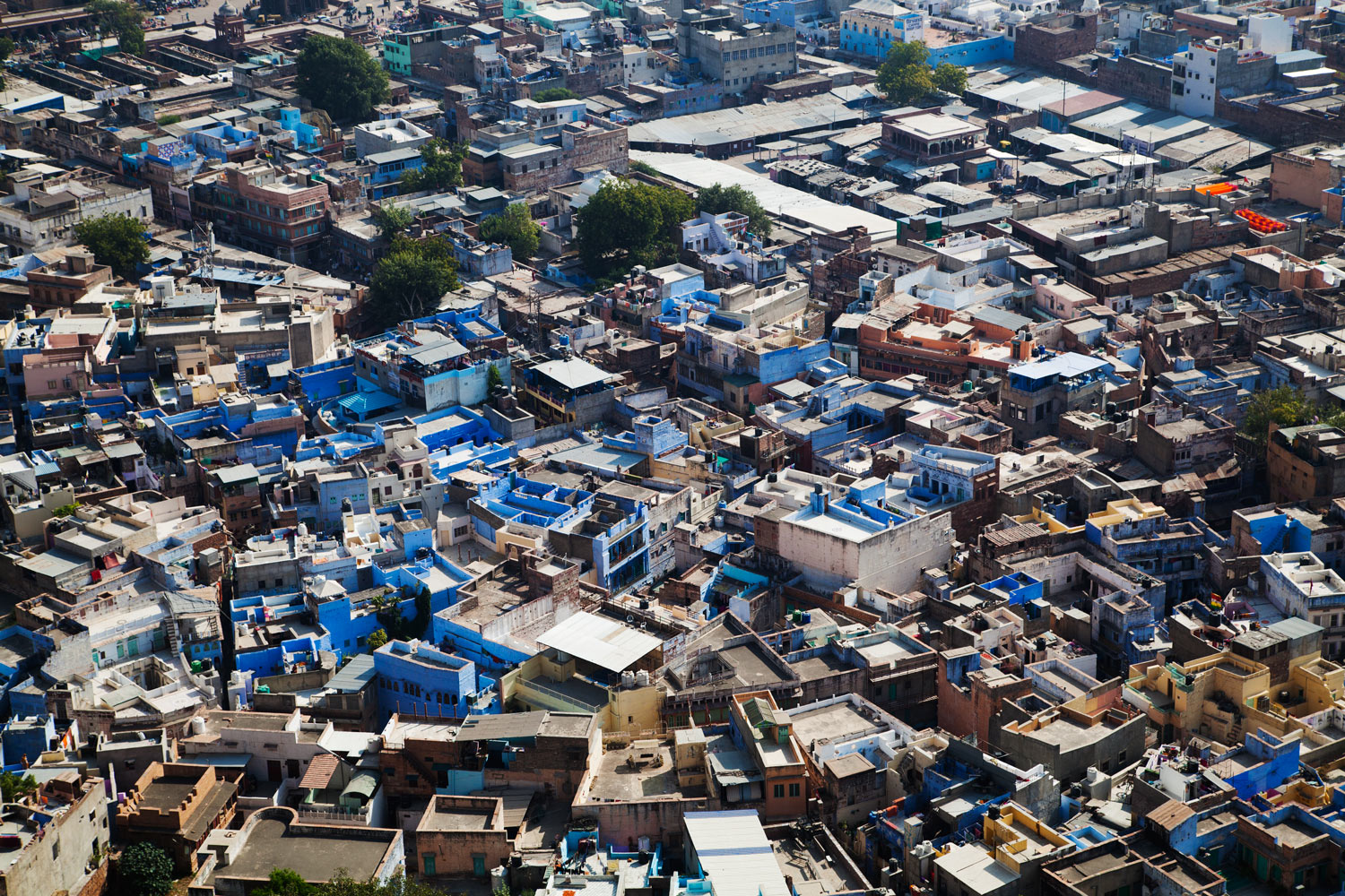 Image: Jodhpur – the blue city of India.