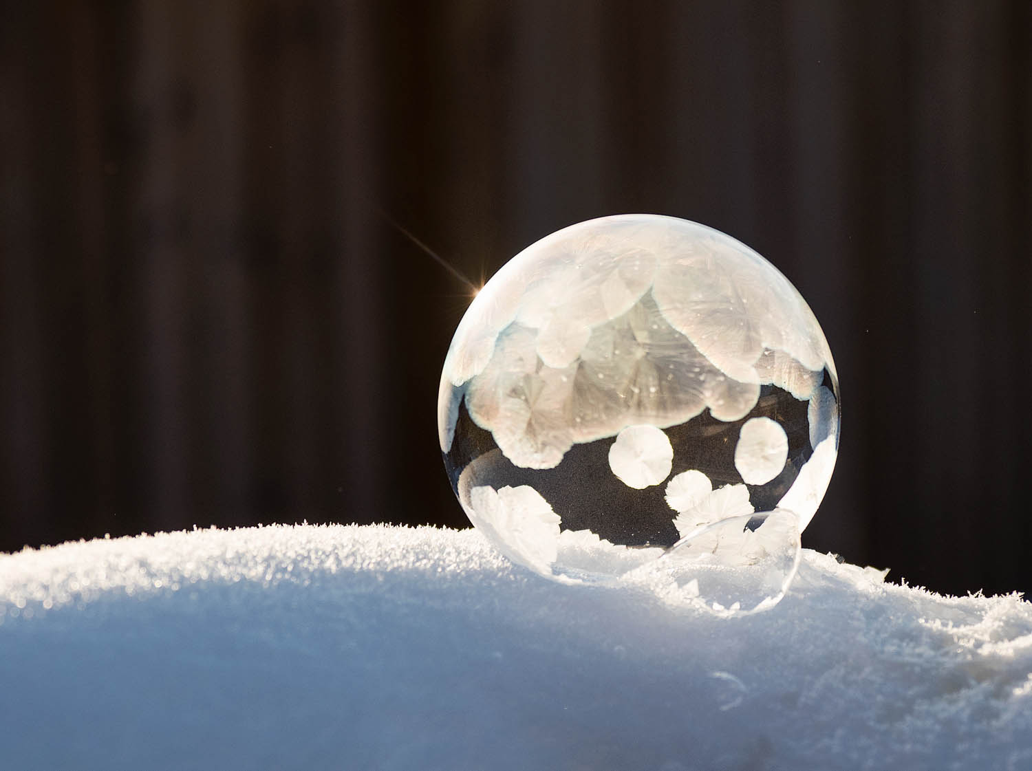 Image: Frozen bubble with a dark background