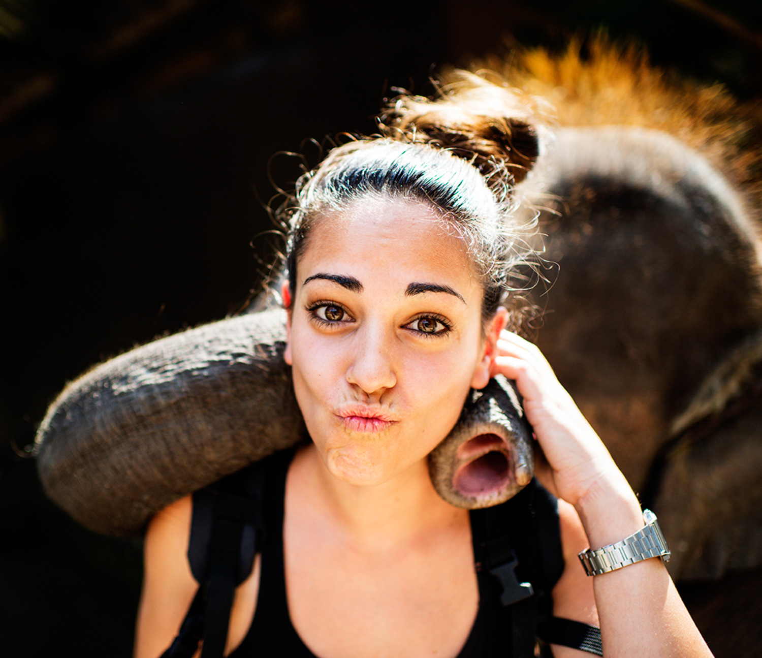 How to Make Well Exposed Photos Every Time Woman Tourist with an Elephant