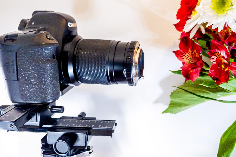 13 - reverse-lens-macro-photography-rick-ohnsman