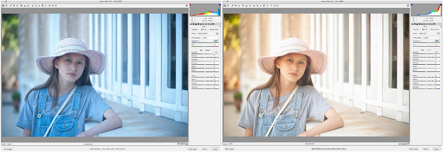 dps-basic-editing-tutorial-color-raw