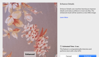 How to Use the New Enhance Details Feature in Lightroom