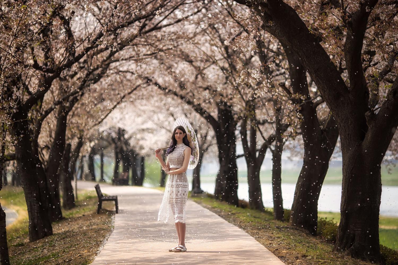 https://i0.wp.com/digital-photography-school.com/wp-content/uploads/2019/04/photograph-trees-02.jpg?resize=1500%2C1000&ssl=1