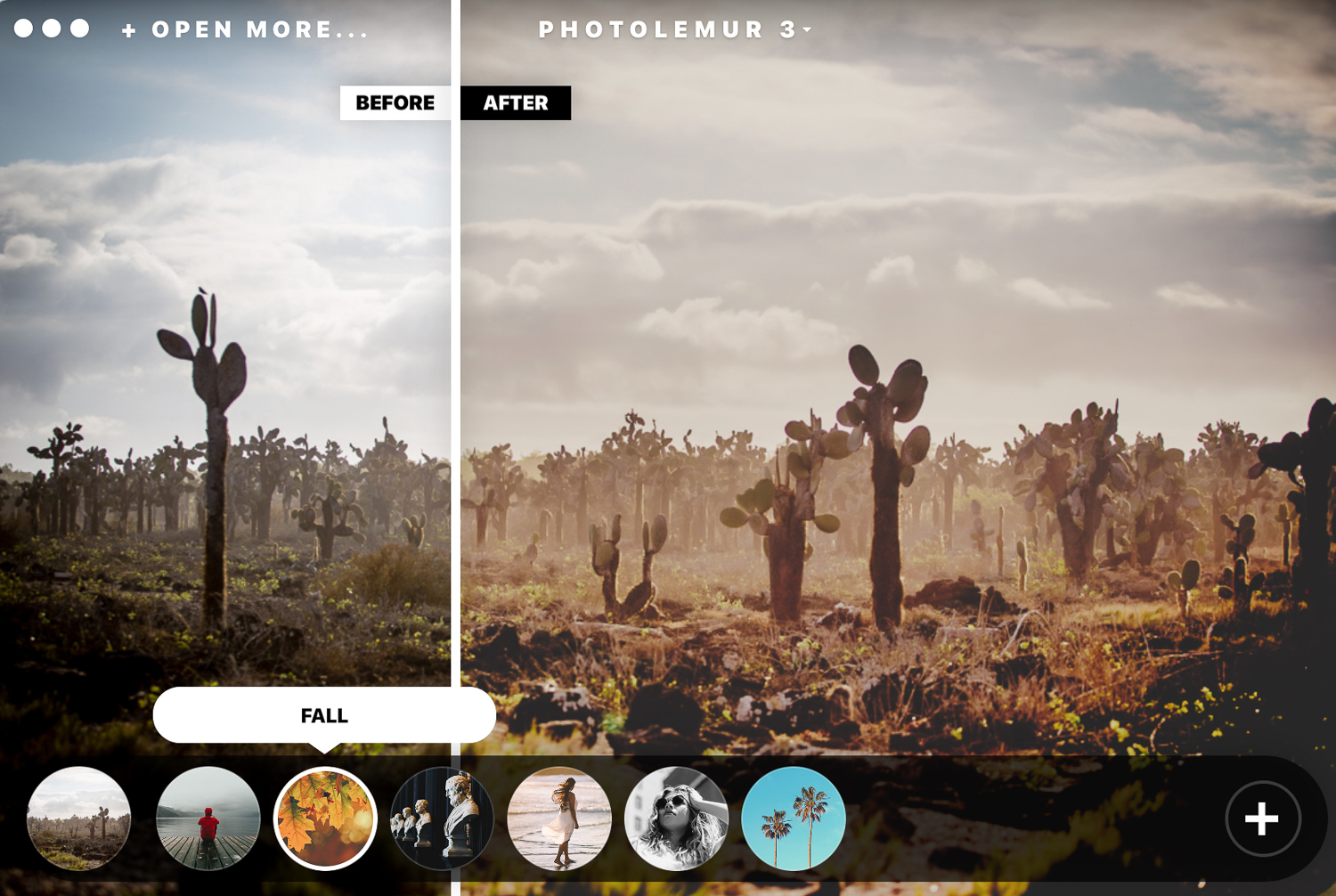 Review: Photolemur 3 Photo Enhancer Software