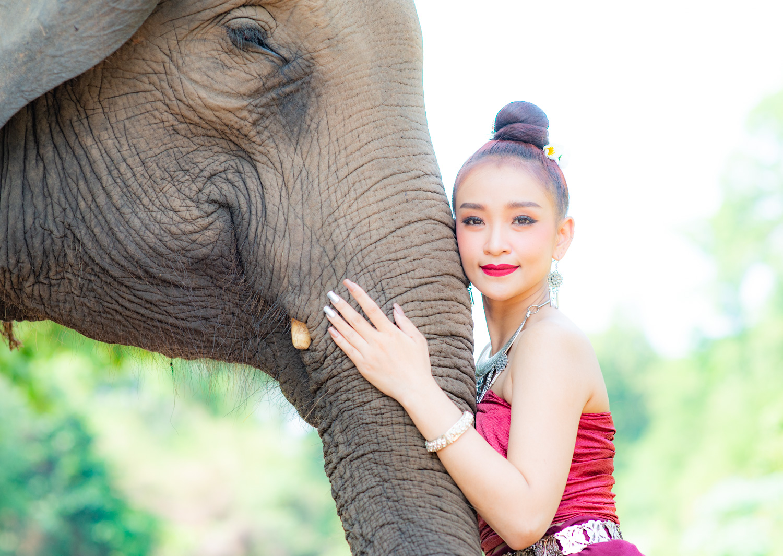 Understanding Exposure Metering Modes Thai Model and Elephant