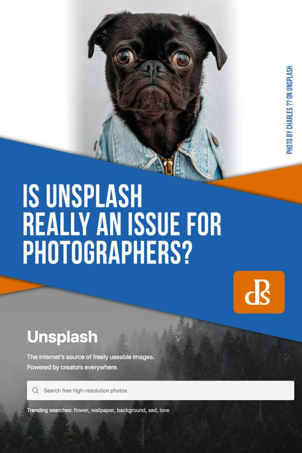 Is Unsplash Really an Issue for Photographers?