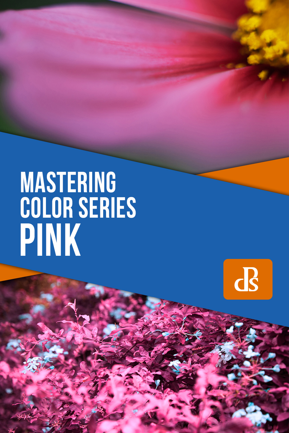 mastering color series pink