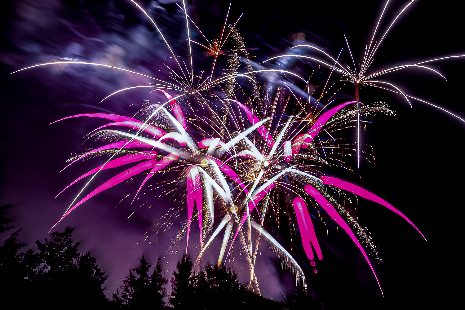 2 - How to Edit Fireworks Photos