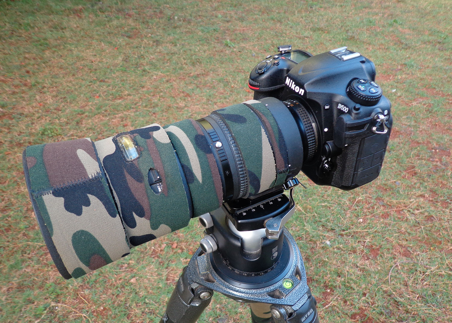 QnA VBage Review of the Nikon D500 for Wildlife and Bird Photography