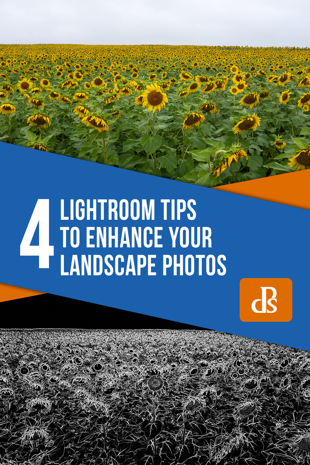 lightroom-tips-for-landscape-photos