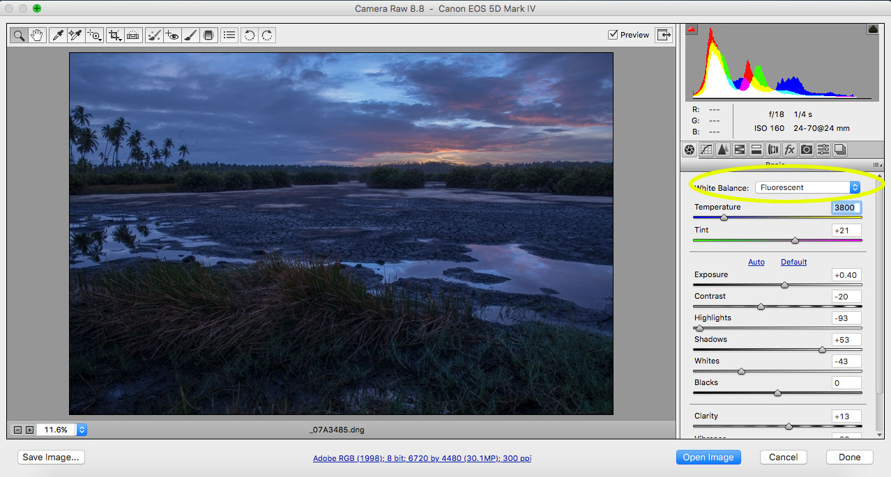 adobe camera raw white balance