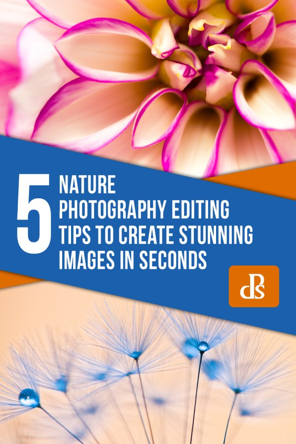 5 Nature Photography Editing Tips to Create Stunning Images in Seconds