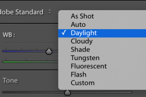 How to Achieve the Perfect White Balance in Lightroom