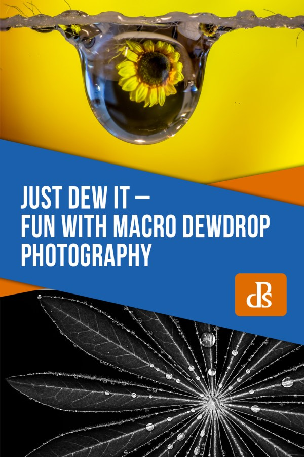 Just Dew It – Fun with Macro Dewdrop Photography