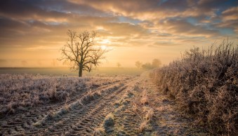 Important Things to Consider When Photographing Winter Scenes