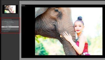 Easy Tips to Create Slideshows in Lightroom