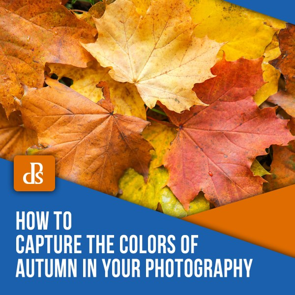 How to Capture the Colors of Autumn in Your Photography