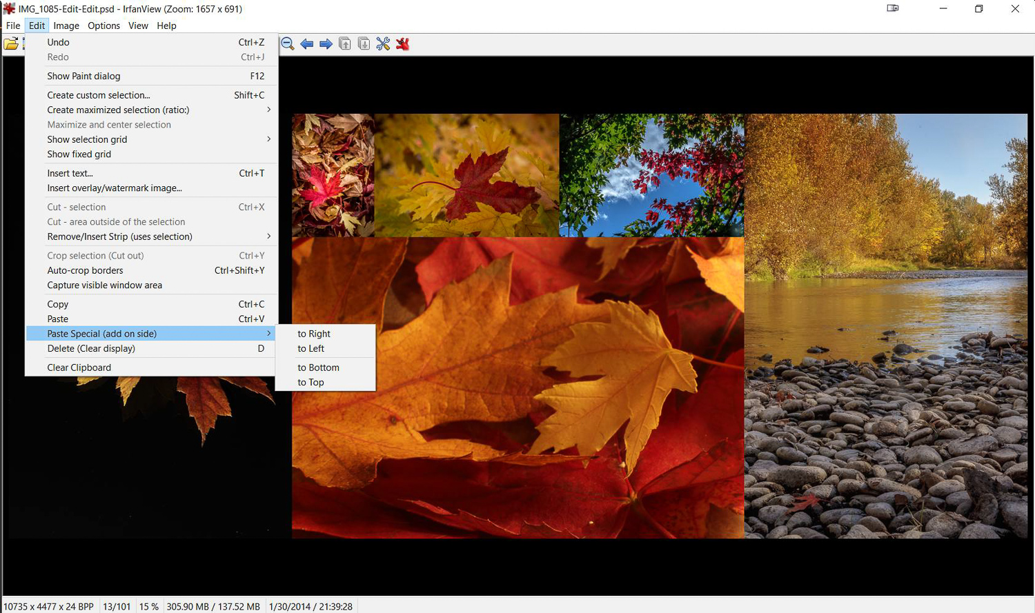 Create multi-image montages with Irfanview.
