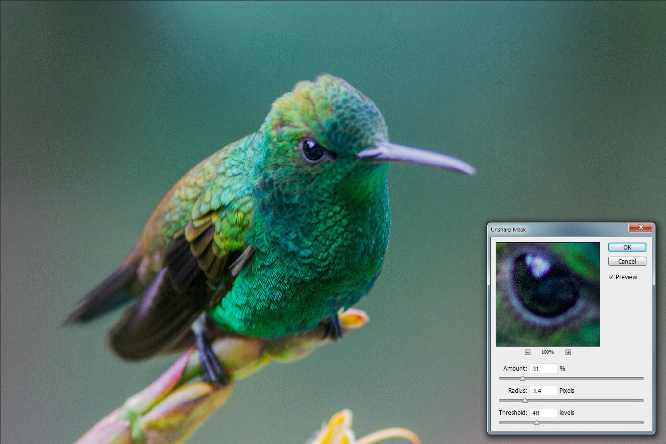 Photoshop-Sharpening-for-Beginners