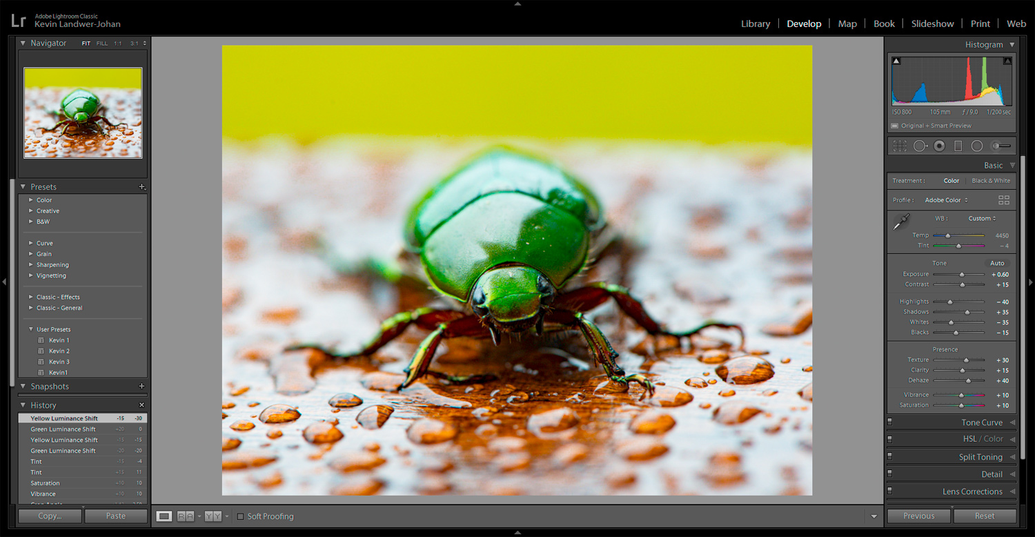 https://i0.wp.com/digital-photography-school.com/wp-content/uploads/2019/12/RAW-Photo-Editing-Edited-Beetle.jpg?resize=1500%2C778&ssl=1