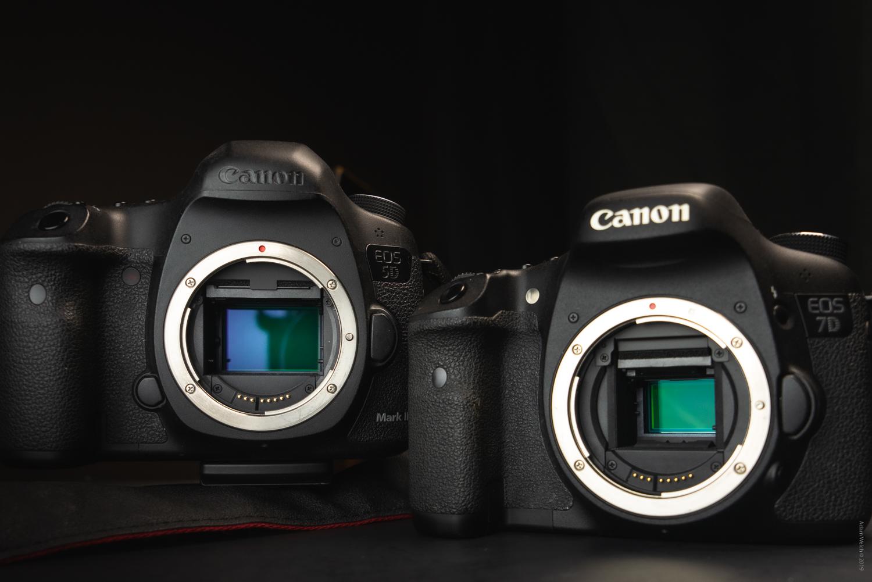 Canon 5D MK3 compared to Canon 7D MK1 sensor