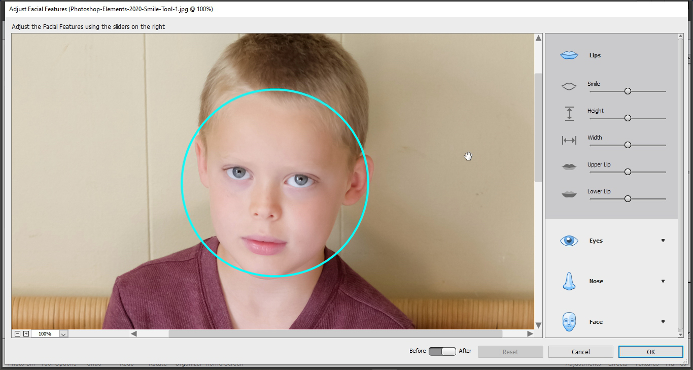 photoshop elements smile tool auto detect