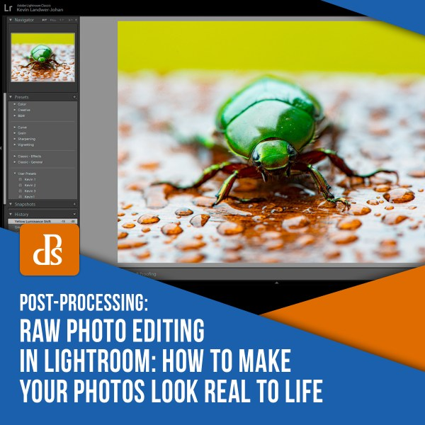 RAW Photo Editing in Lightroom: How to Make Your Photos Look Real to Life