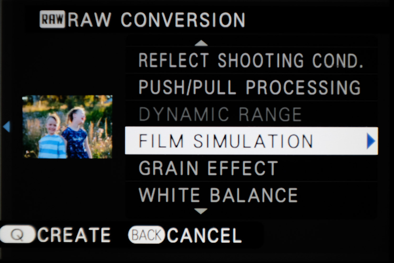 Image: You can even convert RAW images to JPG with Fujifilm JPG film simulations in-camera, but that...