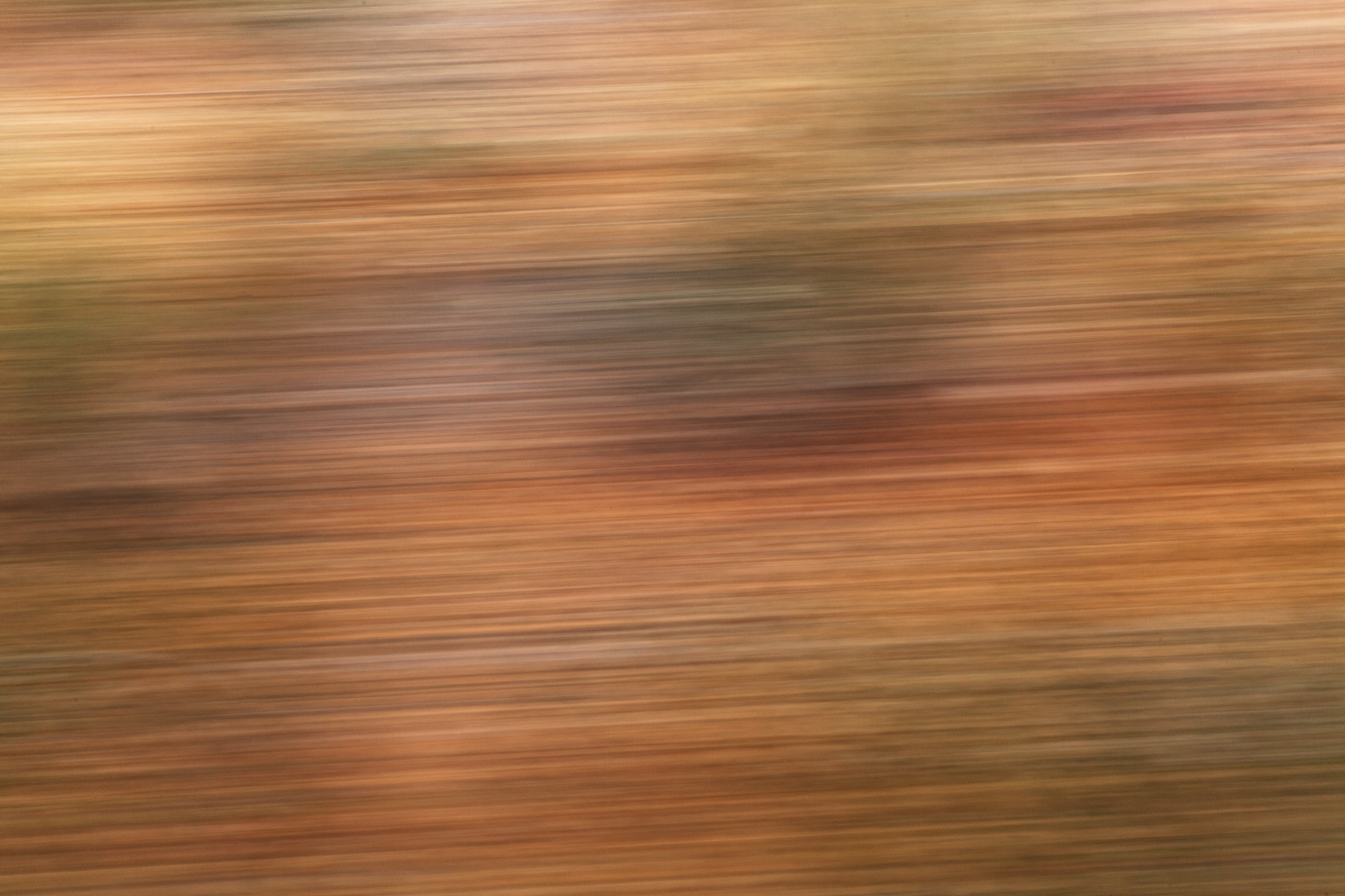 https://i0.wp.com/digital-photography-school.com/wp-content/uploads/2020/01/practicing_abstract_photography_shutter_speed.jpg?resize=1500%2C1000&ssl=1