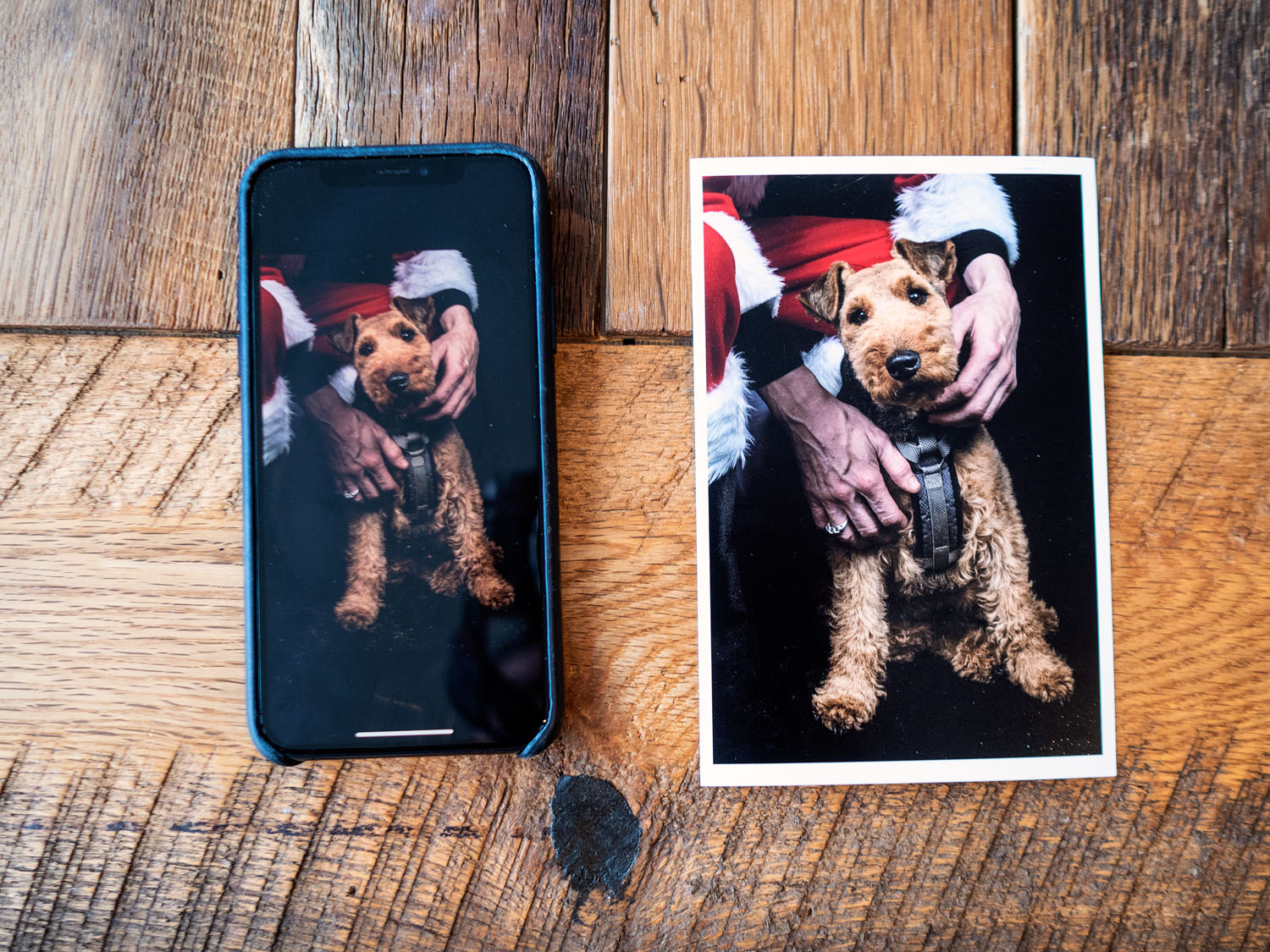 How to Correctly Resize Photos to Print Images Big - Image on a cell phone and printed