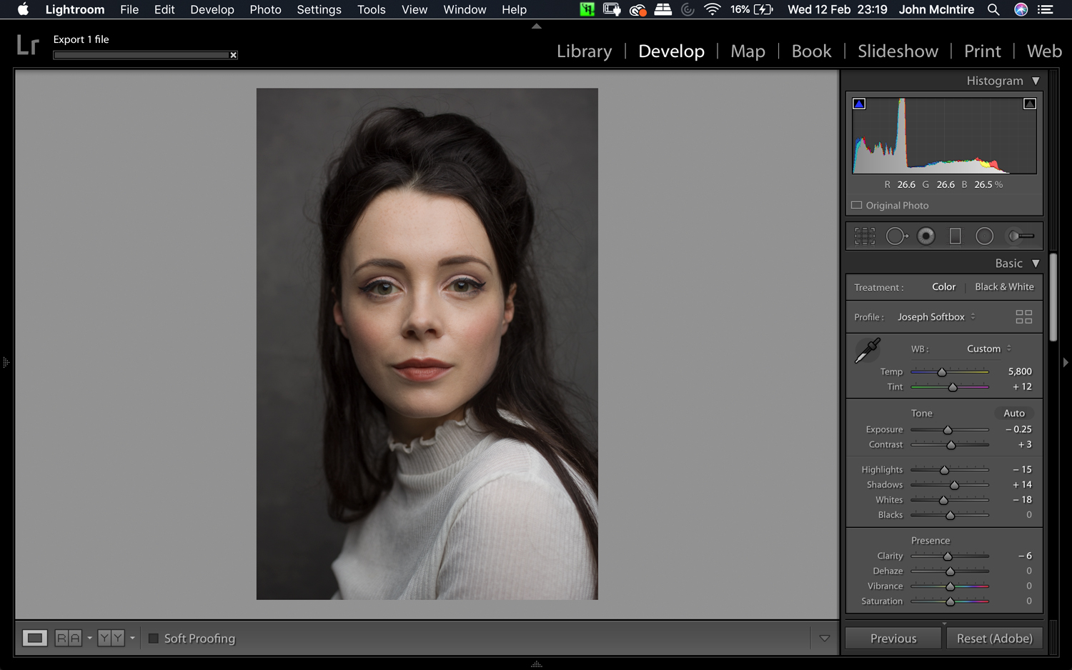 How to Use the Photoshop Camera Raw Filter for Better Photo Editing