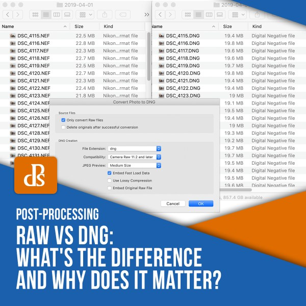 RAW vs DNG: What's the Difference and Why Does it Matter?