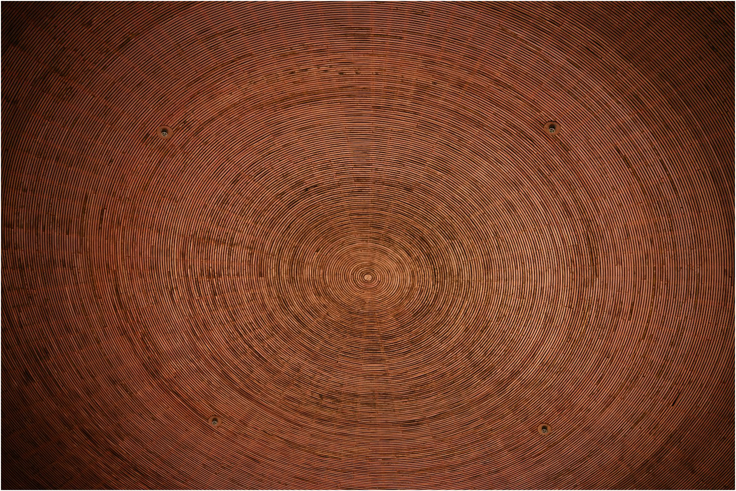 DPS photography by Lily Sawyer – circles repeated in wood