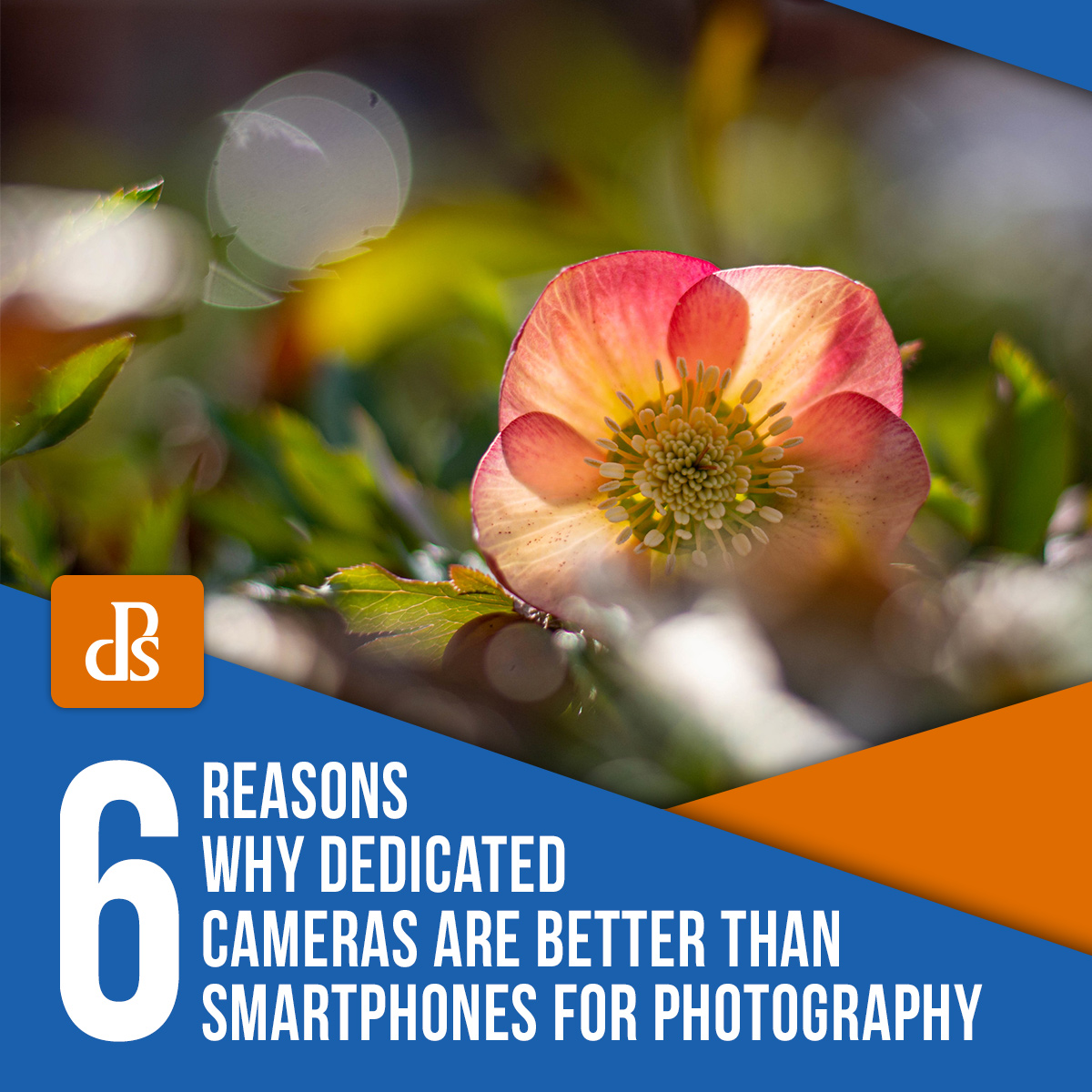 6 Reasons Why Dedicated Cameras are Better than Smartphones for Photography