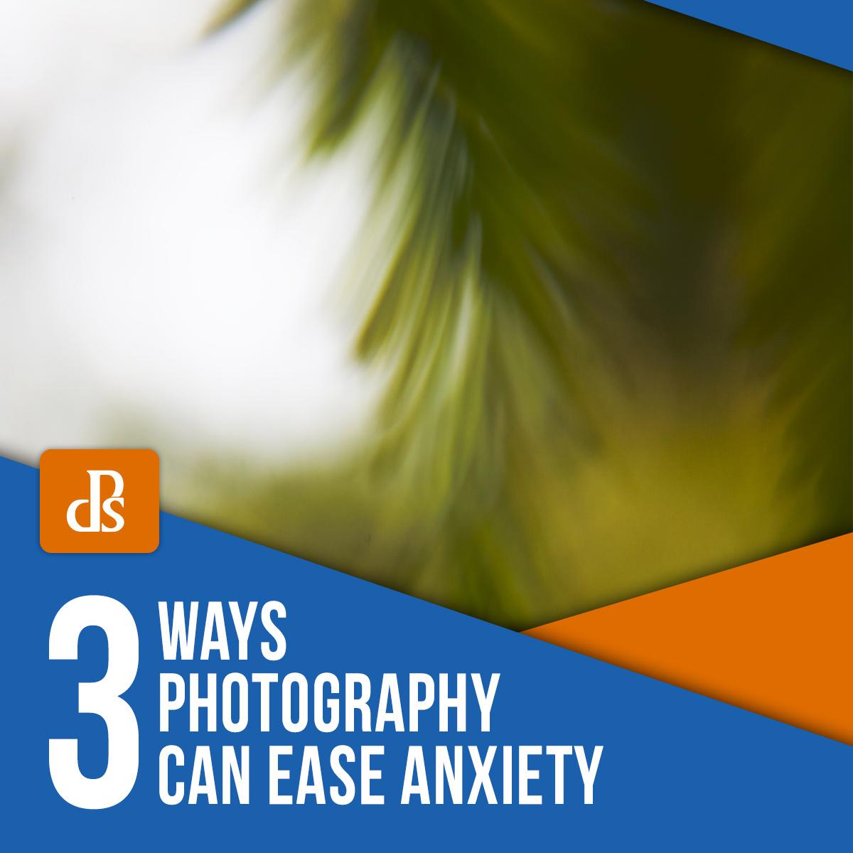 3 Ways Photography Can Ease Anxiety Featured Image