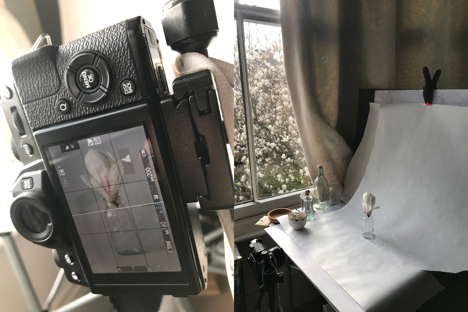 How to Create a Pep Ventosa Inspired Still Life