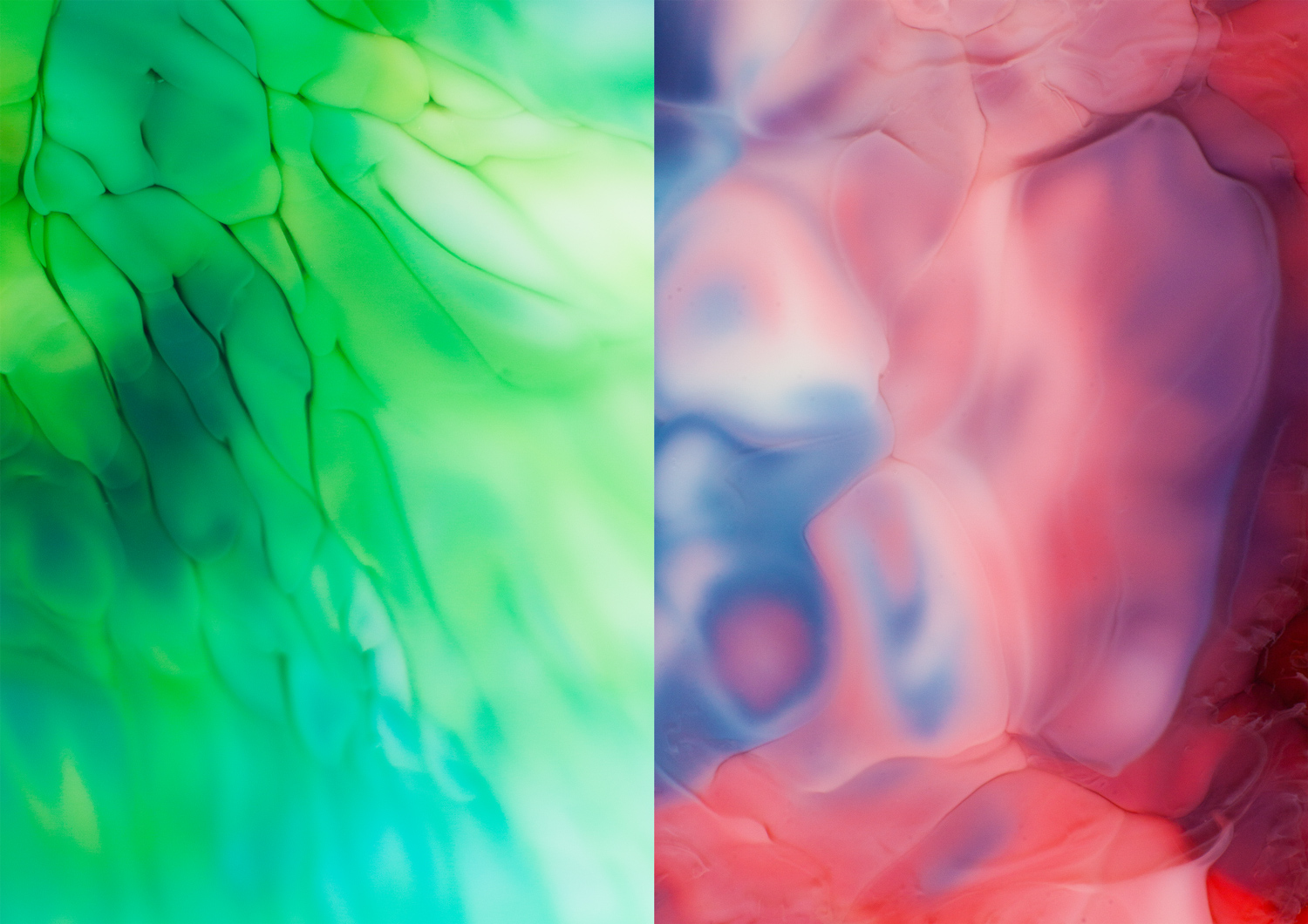 photography with food coloring and milk