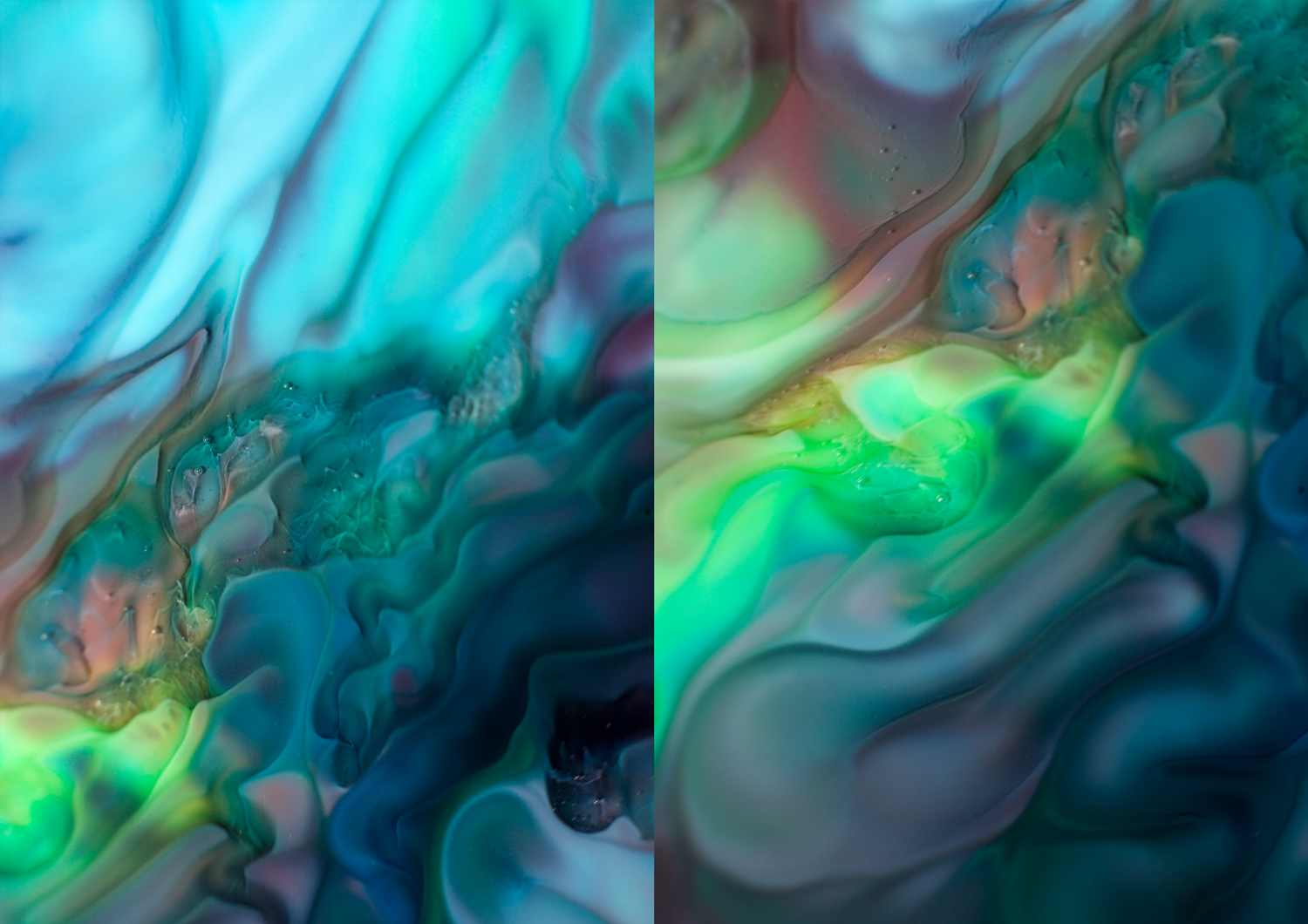 photography with food coloring and milk. Pictures by Megan Kennedy.