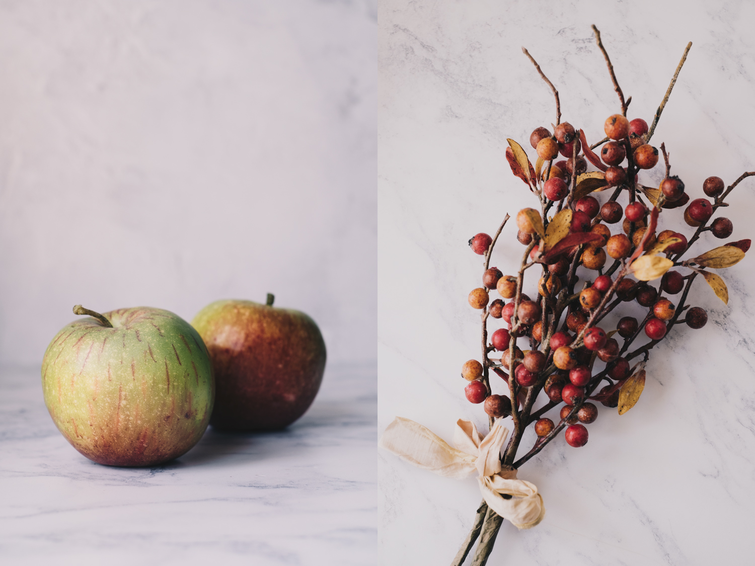 Photographing a Still Life Series for Exhibition or a Portfolio