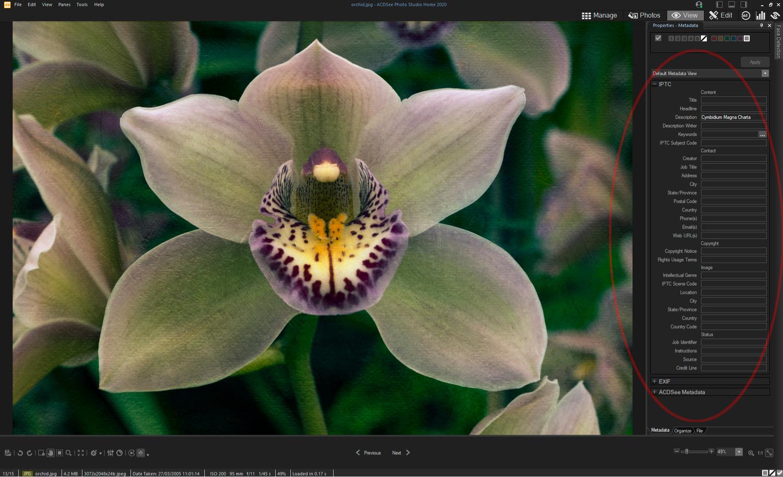 ACDSee Photo Studio Home 2020 - IPTC data