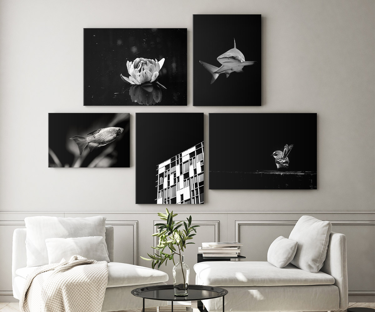 Canvas printing tips – 5 black and white minimalist images printed on canvas and hanging on a wall