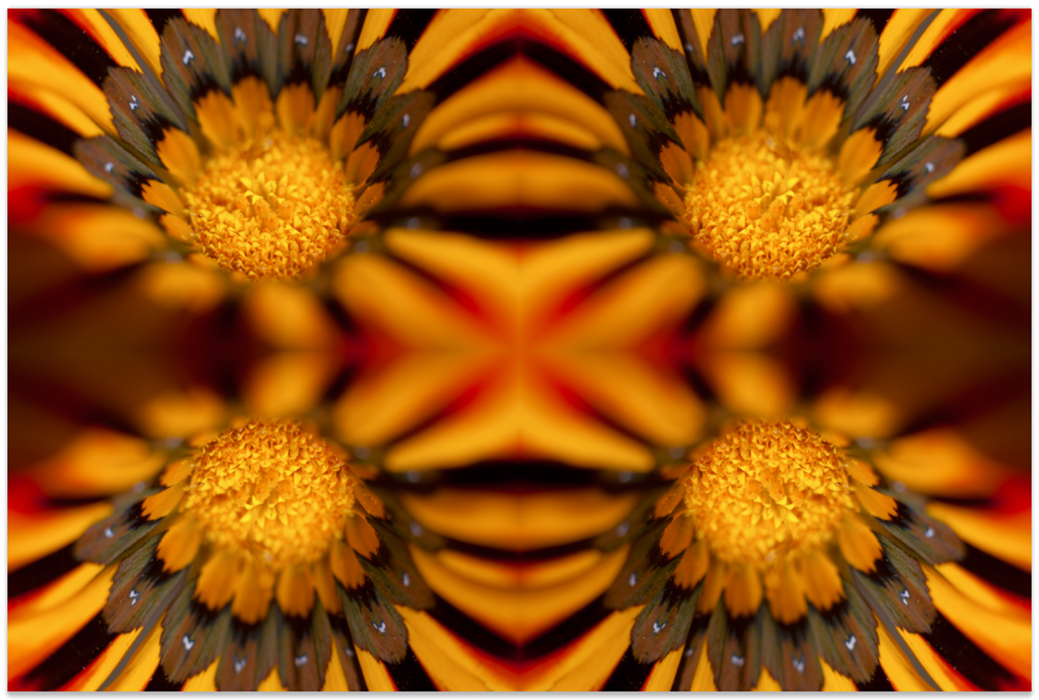 create mandalas in photoshop with stack modes – duplicating the image again