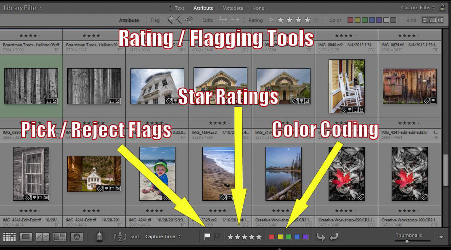 Lightroom flagging, rating, and color-coding tools