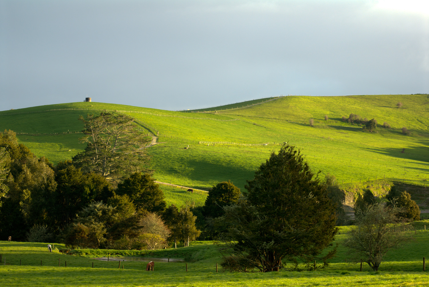 https://i0.wp.com/digital-photography-school.com/wp-content/uploads/2020/05/New-Zealand-Landscape.jpg?ssl=1