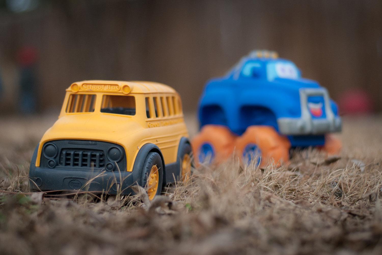 backyard photo safari toys on ground