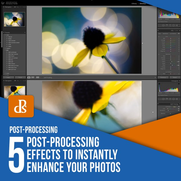 5 Post-Processing Effects to Instantly Enhance Your Photos