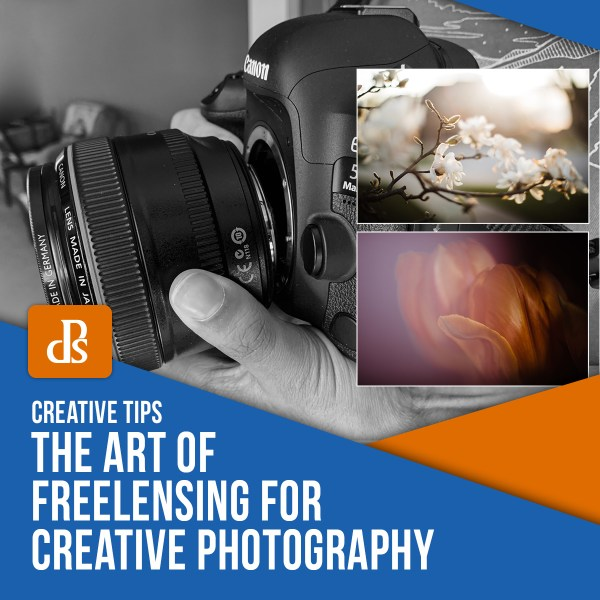 The Art of Freelensing for Creative Photography