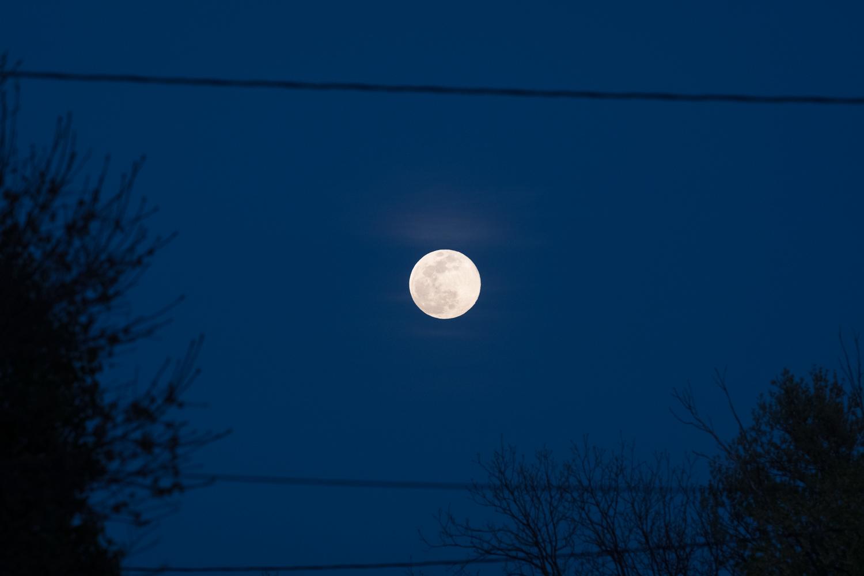 https://i0.wp.com/digital-photography-school.com/wp-content/uploads/2020/05/moon-editing-tips-moon-sooc.jpg?ssl=1